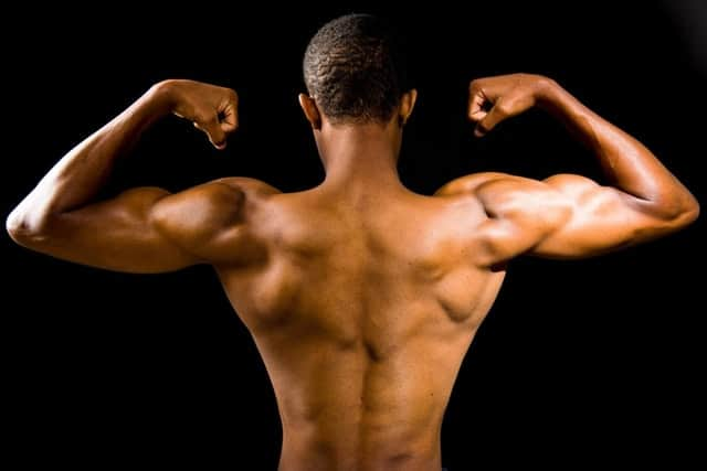 passive stretching_muscle definition
